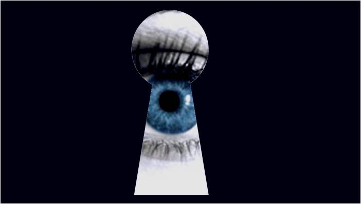 Blog SEI Sicurezza telecamere mobili e privacy